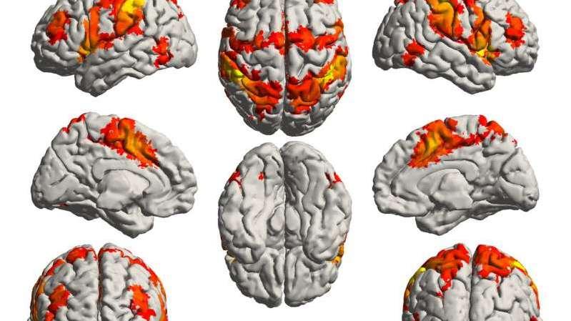 Müzik, beynin Alzheimer hastalığından korunmuş bölgelerini harekete geçiriyor!   Bilim ve Gelecek